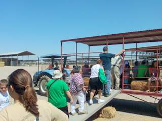 Superstition Farm Hay Wagon