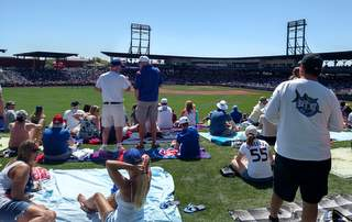 Sloan Park grass seating