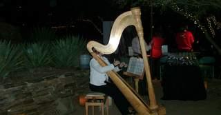 Luminarias Harp