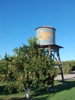 Orange Patch water tower