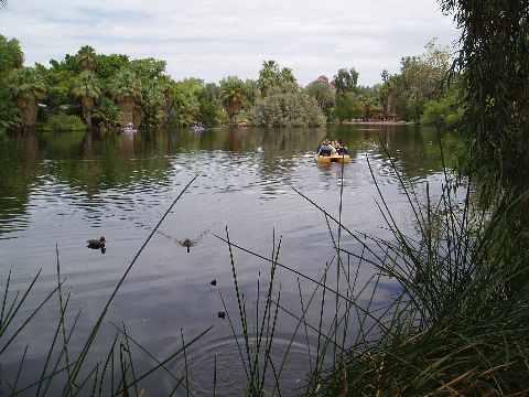 Phoenix Zoo Lake with boat and ducks